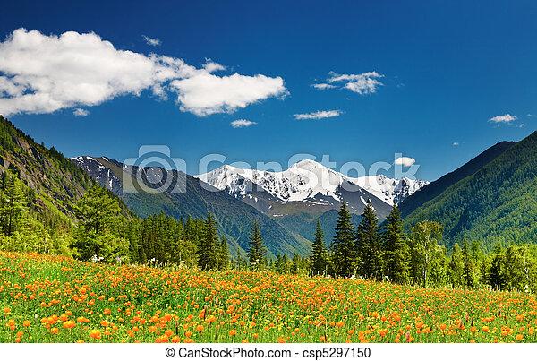Horská krajina - csp5297150