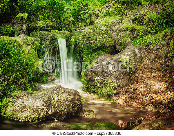 malý, -, vodopád, design, krajina - csp37365336