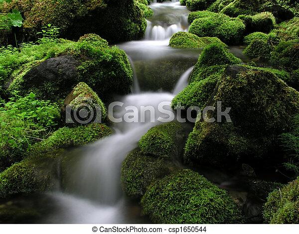 Mountainstream - csp1650544