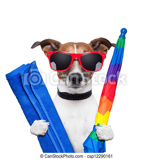 prázdniny, pes, léto - csp12290161