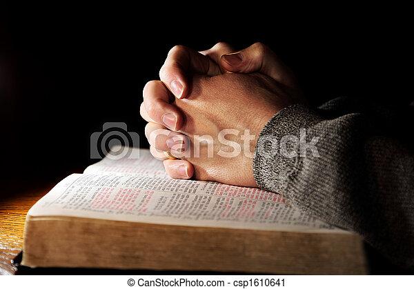 prosit dílo, nad, svatý bible - csp1610641