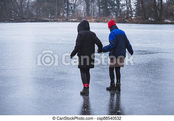 ruce, ženy, majetek, led, dva - csp88540532