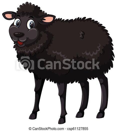 sheep, neposkvrněný, temný grafické pozadí - csp61127855