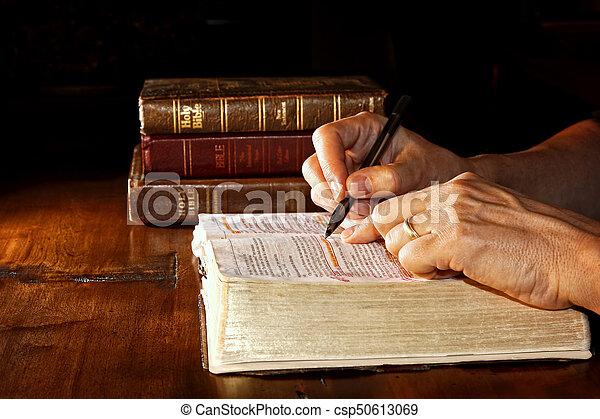 Studuje Bibli - csp50613069